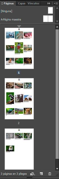 catalogo final indesign paleta páginas